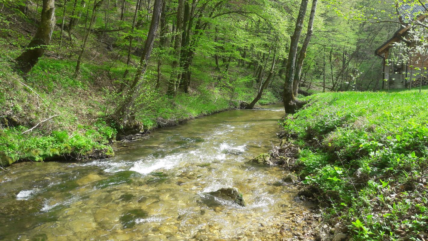 Camp vikendica -najam -Park prirode Žumberak -SLOBODNO